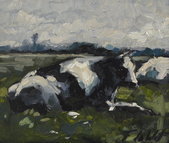 Black white cow 25x30 cm Oil on canvas