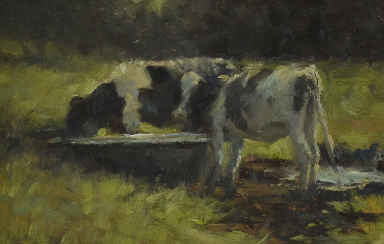 Cows drinking 20x30 cm oil on panel