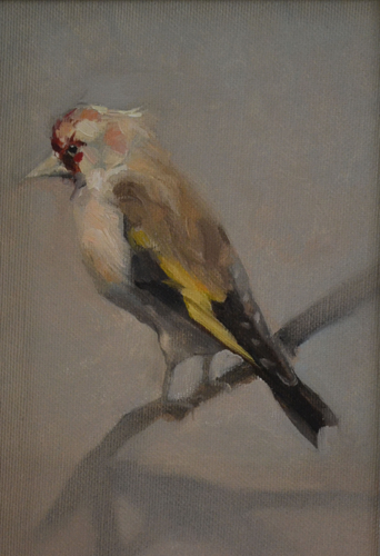 Goldfinch 13x26 cm Oil on canvas