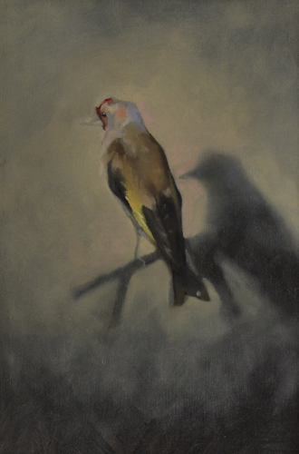 Goldfinch dark 24x35 cm oil on canvas