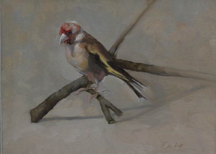 Goldfinch on branch 20x26 cm Oil on canvas