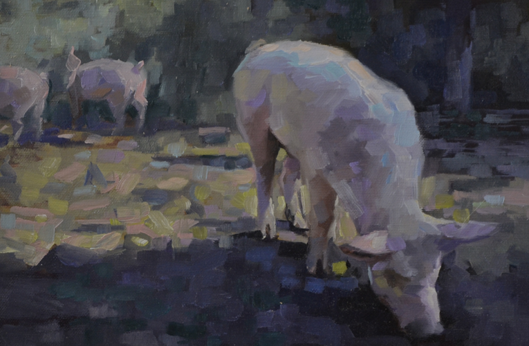 Pig 21x31 cm Oil on canvas