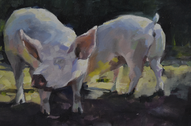 Pigs 21x30 cm oil on canvas