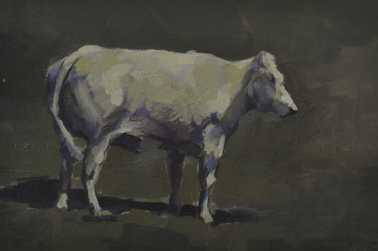 White Cow checking 18x26 cm Oil on canvas